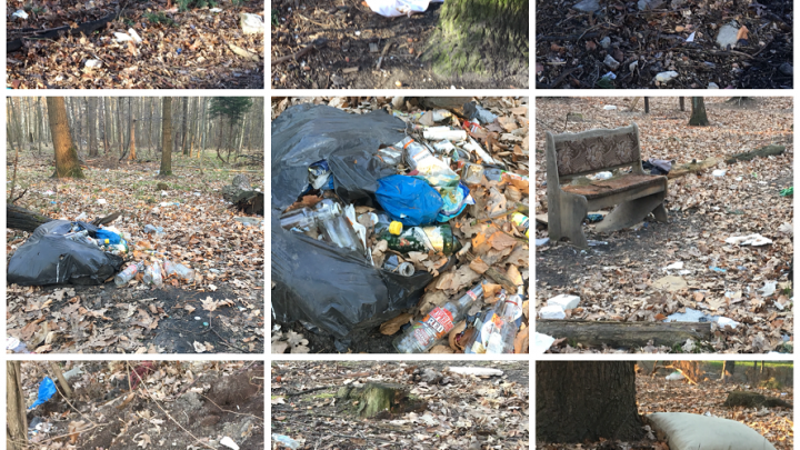 Gdzie jest najwięcej śmieci? Mieszkańcy Katowic głosują. Która dzielnica ?zwycięży??