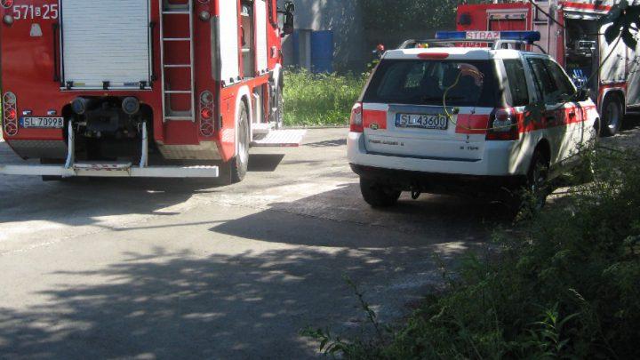 W obu przypadkach strażacy natrafili na ludzkie zwłoki.