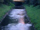 Rzeka Kłodnica skażona nieznaną substancją. Strażacy usiłują ją zebrać.