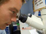 Obecność pięciu różnych wariantów koronawirusa w województwie śląskim, w tym odmiany brytyjskiej, potwierdzili naukowcy z Laboratorium Genetycznego Gyncentrum.