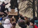 W Katowicach odbył się protest przeciwko planowanej zagładzie stuletnich kasztanowców. Teraz czas na ciąg dalszy. Podpisujcie petycję!