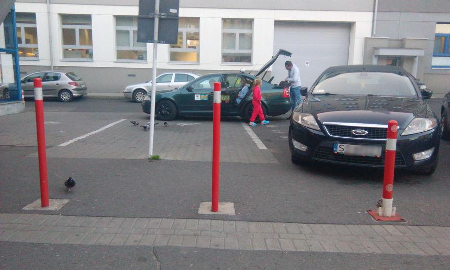 Wyjątkowo interesujące przepisy obowiązujące taksówkarzy w Katowicach. Na przykład: kichasz – możesz nie pojechać.