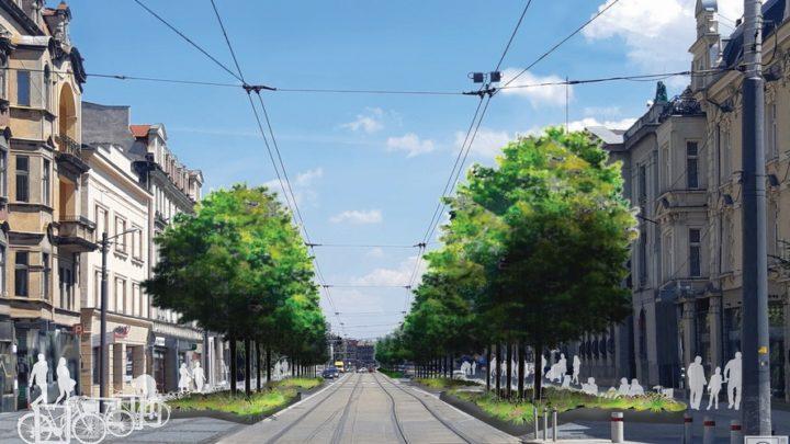 Zielona rewolucja w ścisłym centrum Katowic. Warszawska z drzewami, za to bez samochodów.