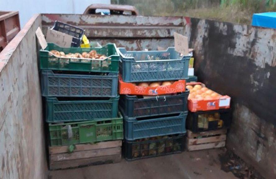 Po siedmiu akcjach straży miejskiej z Katowic aż kilkaset kilogramów warzyw i owoców trafiło do kontenerów na odpadki.